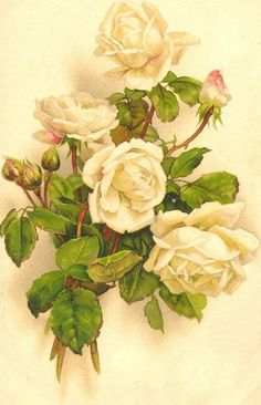 Free from bumble button: Roses for your ATC, scrap booking and collage projects