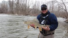 A second shot from fan Corey Anthony! He describes this sucker on the fly as a blast. Caught in early spring pre spawn czech nymphing with Tungsten hares ear nymphs and pheasant tail nymphs. Using a 6-7 wt suckers are a blast, and great practice for trout and other species! We love it Corey thanks!
