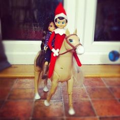 Day 4 – Elfie spent a night horse riding with a Moxie Girl