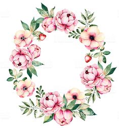 Colorful floral wreath with peonies,flowers,leaves,succulent plant,branches royalty-free colorful floral wreath with peoniesflowersleavessucculent pla. Floral Wreath Watercolor, Watercolor Flowers, Teal Flowers, Colorful Flowers, Illustration Blume, Wreath Drawing, Wedding Frames, Floral Border, Peony Flower