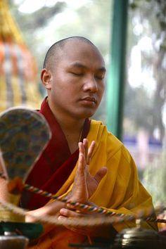 Compassionate world ~ 17th Karmapa Tibet
