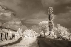 Infrared My Photos, Inspired, Outdoor, Inspiration, Pictures, Outdoors, Biblical Inspiration, Outdoor Games, The Great Outdoors