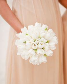 white Darwin tulips tied with white silk grosgrain ribbons for the bridesmaids.