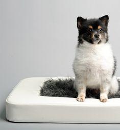 small-dog-bed-nesto