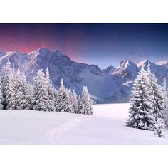 Beautiful winter landscape in the mountains. Sunrise ❤ liked on Polyvore featuring backgrounds, pictures, art sets, art, photos and scenery