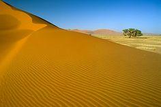 Incluso en el desierto te puedes encontrar