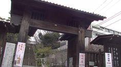#travel#japan#japon#gate