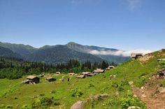 """Düşler Vadisi Maçehel """"Gorgit Yaylası"""" tamzaratur.com Hiking, Tours, Mountains, Nature, Travel, Walks, Naturaleza, Viajes, Destinations"""
