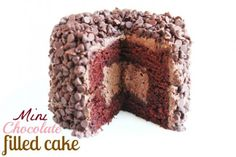 Mini Chocolate Filled Cake