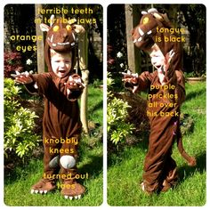 the gruffalo costume