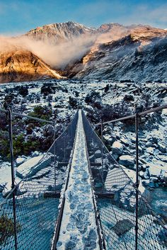 Swing Bridge, Mount Aspiring National Park, New Zealand