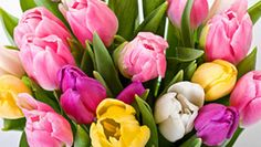 Check out our tips for Mother's Day escapes