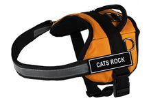 Dean and Tyler DT Works Fun Harness 'Cats Rock' Pet Harness, XX-Small, Fits Girth Size 18-Inch to 21-Inch, Orange/Black -- For more information, visit now : Cat accessories