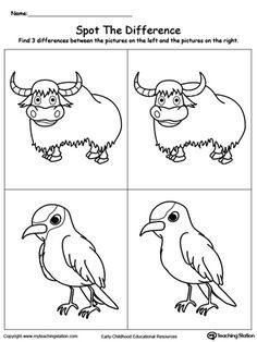 Spot the Difference on the Animals: Rhino and Vulture   Printable ...