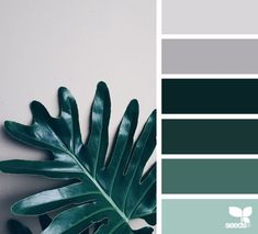 { color nature } - https://www.design-seeds.com/in-nature/nature-made/color-nature-31