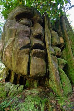 """God Head"" Carving, Stanley Park, Vancouver, Canada"