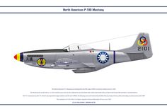 P-51D of the 21st Fighter Squadron, Chinese Nationalist Air Force circa 1949. A legend in World War II, this fighter continued to serve many air forces after the war. By WS-Clave.deviantart.com on @DeviantArt
