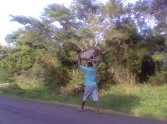 Wheelbarrow get a lift Living On The Edge, Picture Fails, Take Risks, Life Is Hard, Wheelbarrow, Funny Clips, Funny Pictures, Funny Memes, Africa