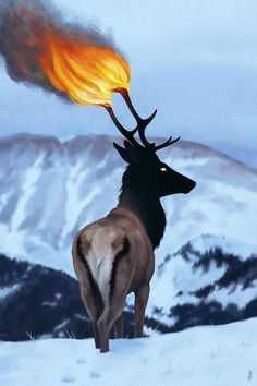 Flaming Antlers Download at: http://www.myfavwallpaper.com/2018/03/flaming-antlers.html #iphonewallpaper #phonewallpaper #background #wallpaper #myfavwallpaper