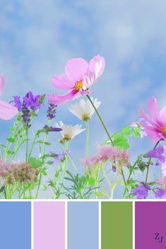 ZJ Colour Palette 527 #colourpalette #colourinspiration