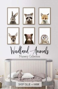 Looking for the sweetest woodland nursery decor? Meet our adorable peek a boo woodland animals. These fun modern photo prints are highly detailed and compatible with any decor. The perfect gift for a baby shower or finishing touch to a nursery. Baby Room Design, Baby Room Decor, Baby Room Wall Art, Baby Boy Rooms, Baby Boy Nurseries, Baby Room Ideas For Boys, Baby Animal Nursery, Boy Nursery Art, Boy Nursery Themes