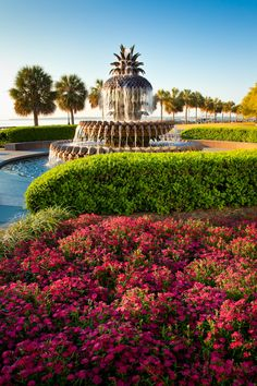 """hueandeyephotography: """" Pineapple Fountain, Waterfront Park, Charleston, SC © Doug Hickok All Rights Reserved hue and eye the peacock's hiccup """""""