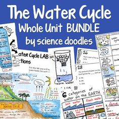 FREE!   The Water Cycle Whole Unit BUNDLE FREEBIE!! by science doodles