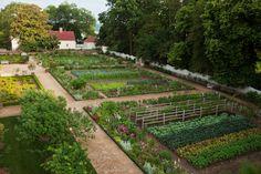 Mt Vernon Upper Garden