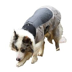 MY PET Clothes for Small Medium Dogs Large Breed Pitbull Waterproof And Warm Coat Jacket Outdoor Safety Raincoats with Reflective Article Plaid Winter Autumn Velcro Soft Khaki L *** Click on the image for additional details.Note:It is affiliate link to Amazon.