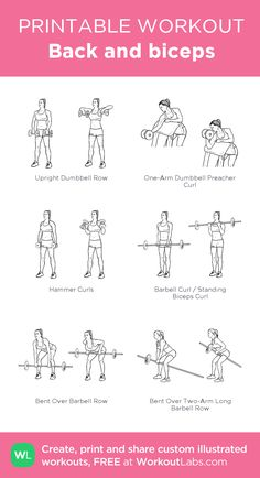 Back and biceps: my visual workout created at • Click thro. Bicep Workout Women, Back And Bicep Workout, Chest Workout Women, Weights Workout For Women, Gym Workout Plan For Women, Biceps Workout, Gym Workouts, Barbell Workout For Women, Chest And Tricep Workout
