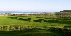 """Gibbs Farm – Yeni Zellanda... Maya Lin """"A Fold in the Field"""" (2013)"""