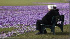 """Ni la muerte pudo con su amor: pareja de ancianos """"se reúne"""" con 14 horas de diferencia - http://panamadeverdad.com/2014/08/21/ni-la-muerte-pudo-con-su-amor-pareja-de-ancianos-se-reune-con-14-horas-de-diferencia/"""