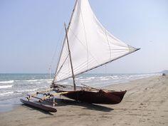 Outrigger Sailing Canoes: Grillabongquixotic's Blog