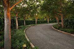 Top 60 Best Driveway Landscaping Ideas - Home Exterior Designs - Unique Gravel Driveway Landscaping Hedges And Tree Ideas - Driveway Entrance Landscaping, Driveway Design, Gravel Driveway, Landscaping Ideas, Landscaping Software, Patio Ideas, Garden Landscaping, Hedges, Interior Exterior