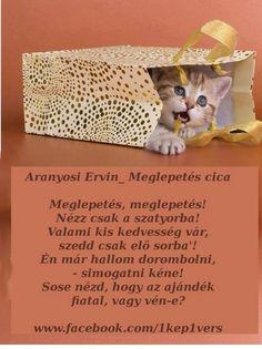 Aranyosi Ervin Meglepetés
