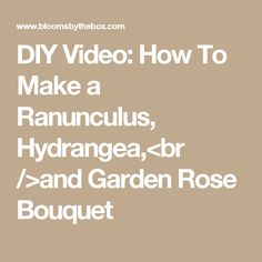 DIY Video: How To Make a Ranunculus, Hydrangea,<br />and Garden Rose Bouquet