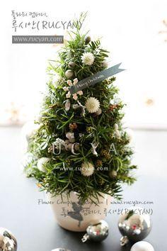 플라워 컴퍼니, 루시안(RUCYAN) - 갤러리 [미니 크리스마스 트리(Mini Christmas Tree)_[루시안]원데이코스]