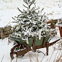 Sharps Farm: Christmas Decorationing Inspiration