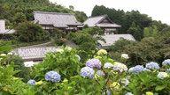 麻綿原高原(まめんばらこうげん) 千葉県大多喜町