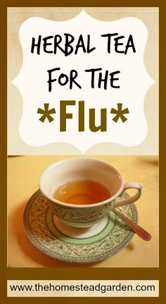 Herbal Tea for the Flu