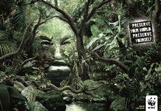 WWF-preserve+your+world-jungle1.jpg (1200×828)