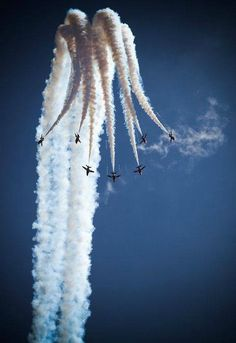 The Blue Angels, based in nearby Pensacola, are flying again in Photo cour… - Aircraft design Blue Angels, Cool Pictures, Cool Photos, Crazy Photos, Creative Photos, Beautiful Pictures, Photo Avion, Red Arrow, Military Aircraft