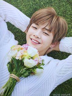 Wanna-One - Kang Daniel Daniel 3, Prince Daniel, Jinyoung, Kdrama, Ha Sungwoon, All Meme, Celebs, Celebrities, Kim Jaehwan