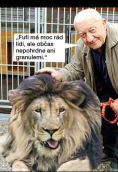 Humor, Writings, Ps, Memes, Funny, Wall, Animals, Animales, Animaux