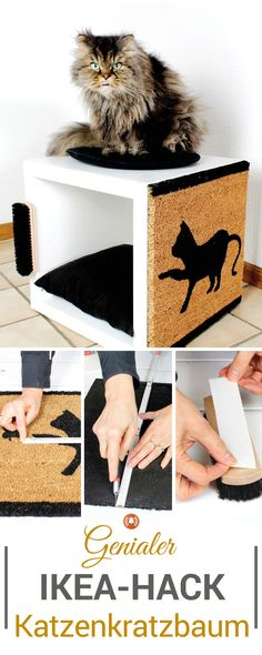 Ikea-Hack: Katzenkratzbaum aus Kallax-Regal Individual cat scratching post for your baby tiger. This Ikea hack turns a simple Kallax cube into a cuddly cave, a viewing area and a cat tree for your cat. The DIY guide can also be found as a video. Diy Kallax, Kallax Shelf, Ikea Kallax, Diy Furniture Projects, Cat Furniture, Diy Projects, Ikea Cat, Diy Cat Tree, Kallax Regal