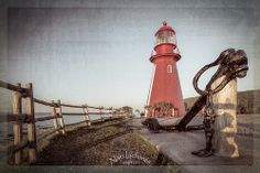 Haute-Gaspésie_8 La Martre, Lighthouses, Entrance, Architecture, Modern, Top, Arquitetura, Entryway, Trendy Tree
