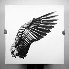 Wing Pen Drawings by Alessandro Paglia Milanese artist and photographer Alessandro Paglia is known for his photorealistic pen-and-ink drawings of pop-culture icons and familiar objects. His latest creations, however, are breathtaking large-format x Eagle Wing Tattoos, Wing Tattoo Men, Tattoo Son, Wing Tattoo Designs, Make Tattoo, Wings Drawing, Bird Wings, Black Wings, Ink Pen Drawings