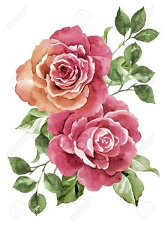 Watercolor Illustration Flowers Stock Photo, Picture And Royalty ...