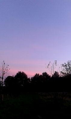 paars en roze