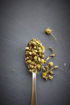 Chamomile - Possible Drug Interactions